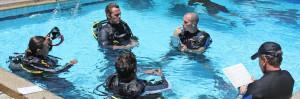 New PADI Instructors & Technical Divers.